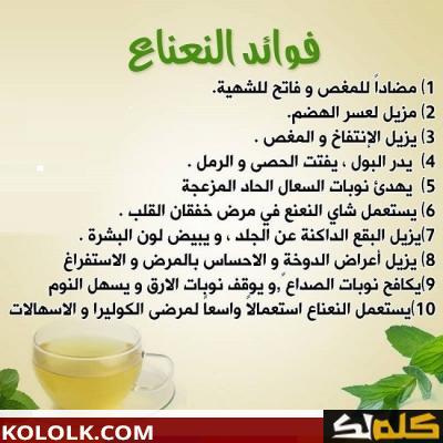 فوائد النعناع الأخضر مع الشاى