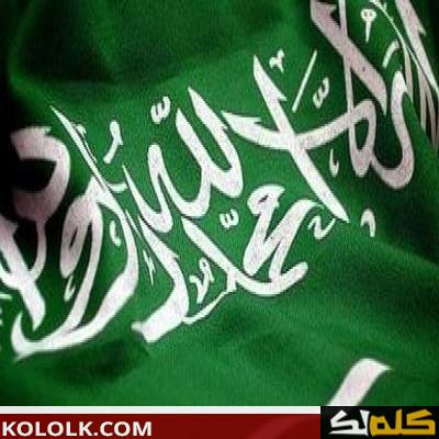 أهمية وفائدة موقع المملكة العربية السعودية