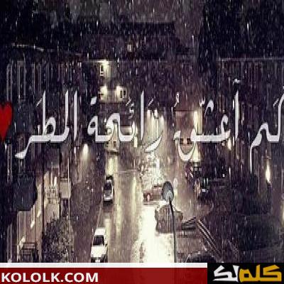 عبارات وكلمات وعبارات عن المطر