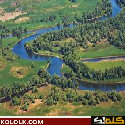 اين يوجد ويقع نهر الدانوب والراين
