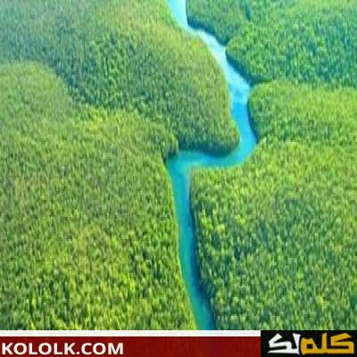 اين يوجد ويقع نهر الأمازون