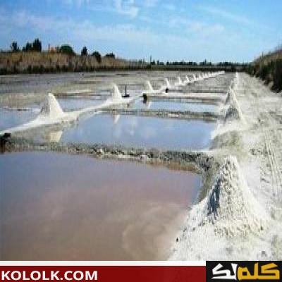 كيف يتم فصل الملح عن الماء