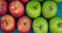 الفرق بين التفاح الأخضر و الأحمر