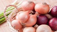 الفرق بين البصل الأبيض والأحمر