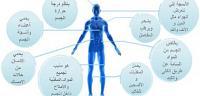 أهمية وفائدة الماء في جسم الإنسان
