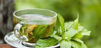اضرار الشاي الأخضر