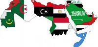 تعرف على ما هى أكبر دولة عربية مساحة
