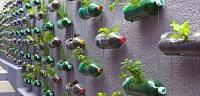 كيف أستفيد من زجاجات البلاستيك
