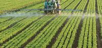 تعريف ومعنى الزراعة
