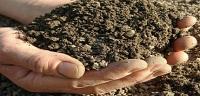مراحل تشكل التربة