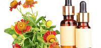العلاج و دواء الاقتناصي