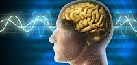 أعراض كهرباء الجسم