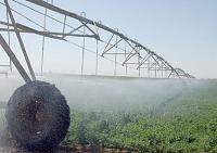 تعريف ومعنى الزراعة المطرية