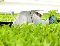 تعريف ومعنى الزراعة الالكترونية